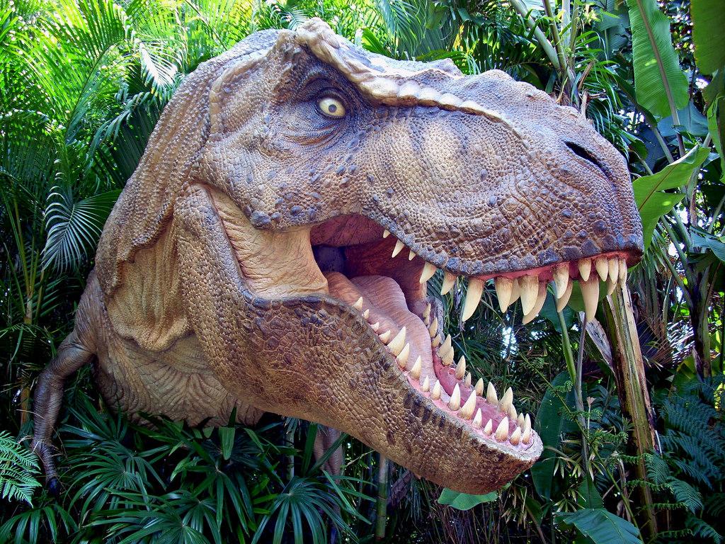 L homme aurait il pu chapper un dinosaure t rex en - Dessin dinosaure t rex ...