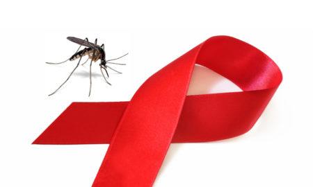 moustique sida