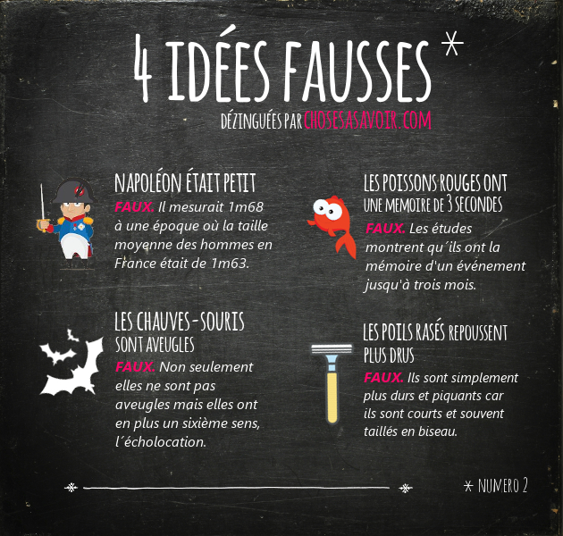 ideesfausses2