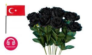 rose noire halfeti