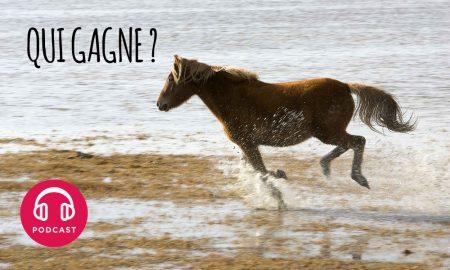 cheval au galop maree