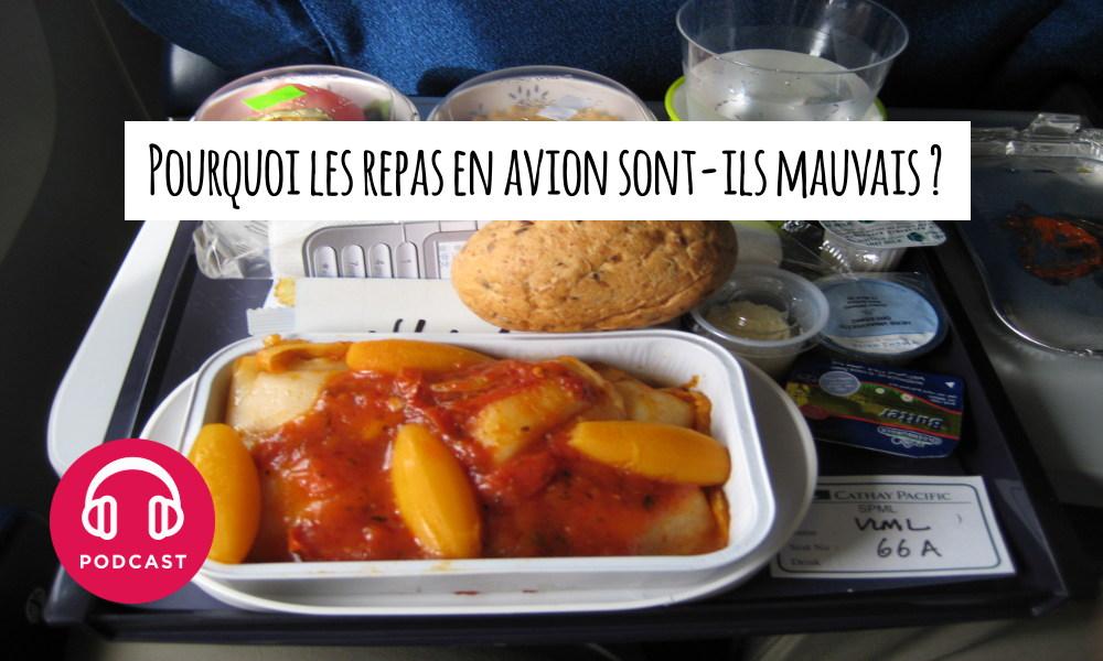 repas en avion