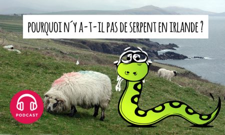 serpent irlande