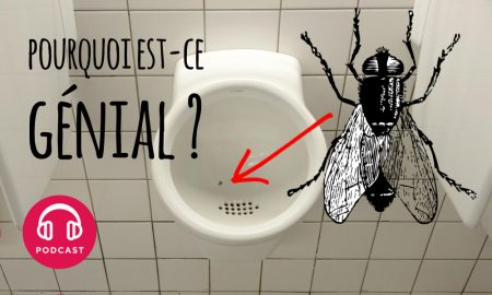 urinoir mouche