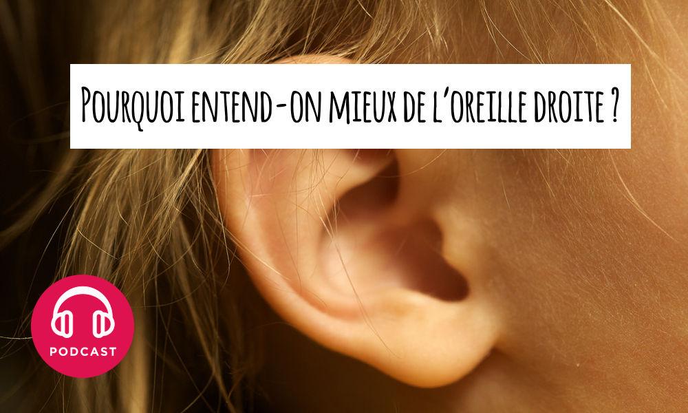 oreille droite