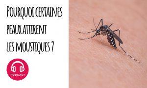 moustique