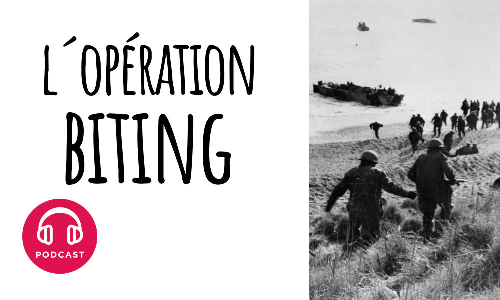 operation biting